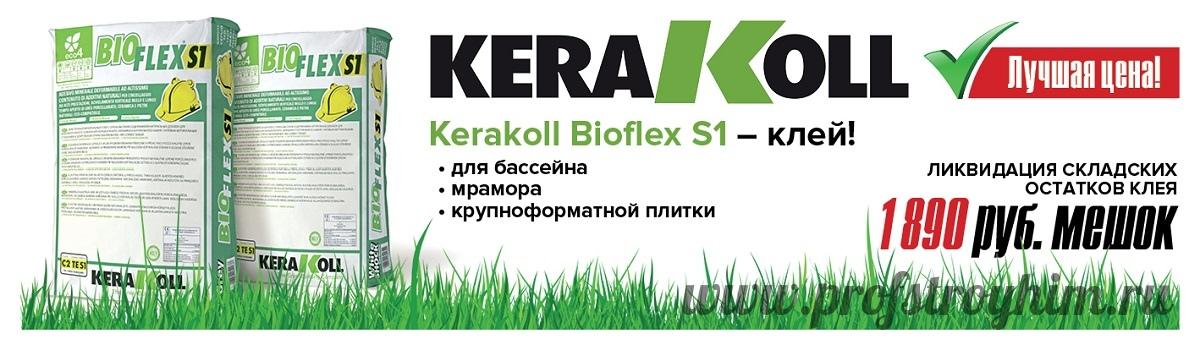 BioflexS1